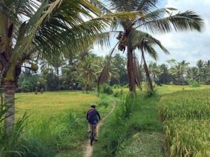 Landtour Cycling Tour Bali