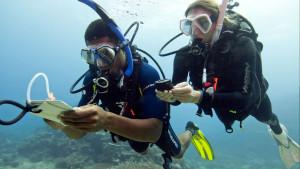 PADI Rescue Diver Course PADI Divemster