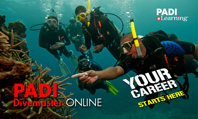 PADI Divemaster course with Diving Indo
