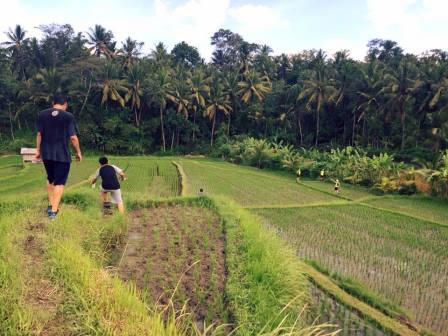 Hash House Harriers Bali diving Indo
