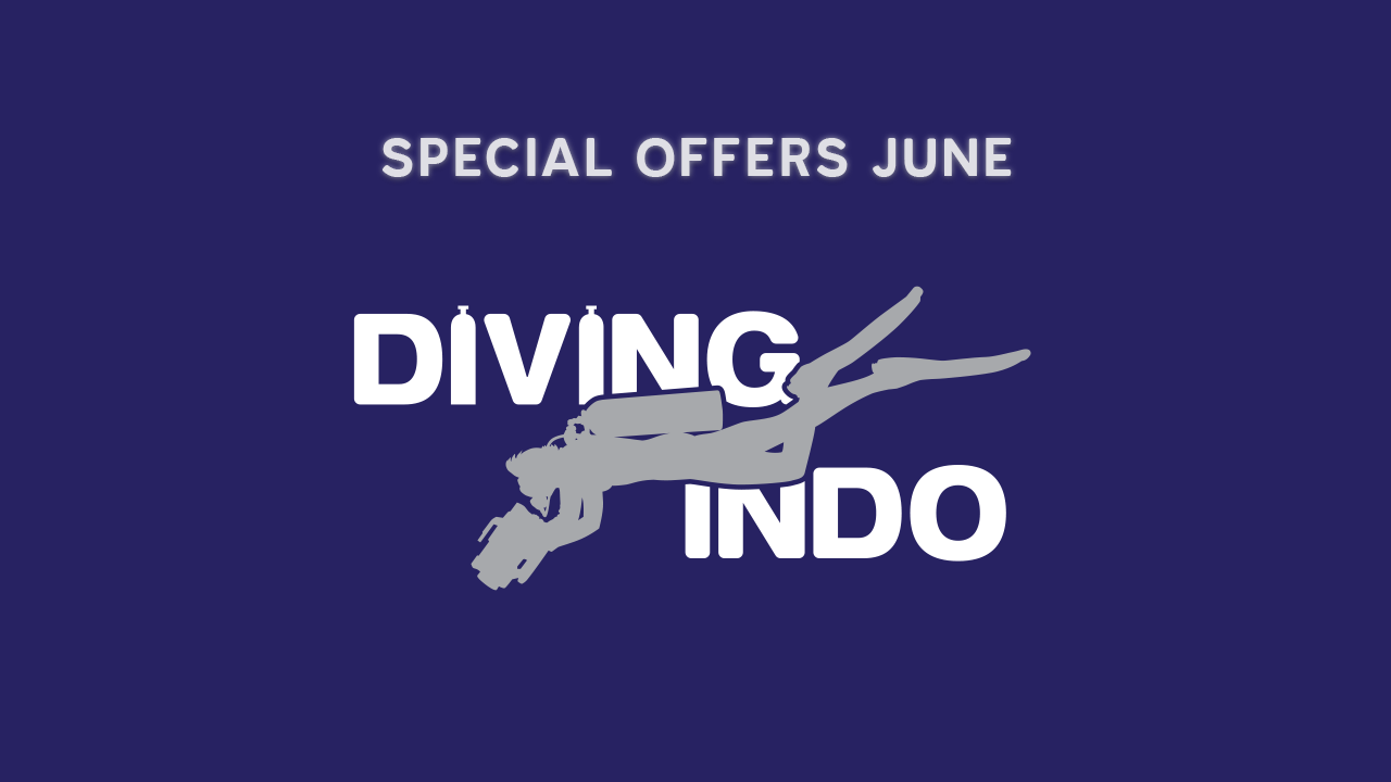 Bali diving special offer