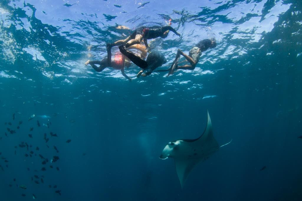 MP Bali Snorkeling with mantas