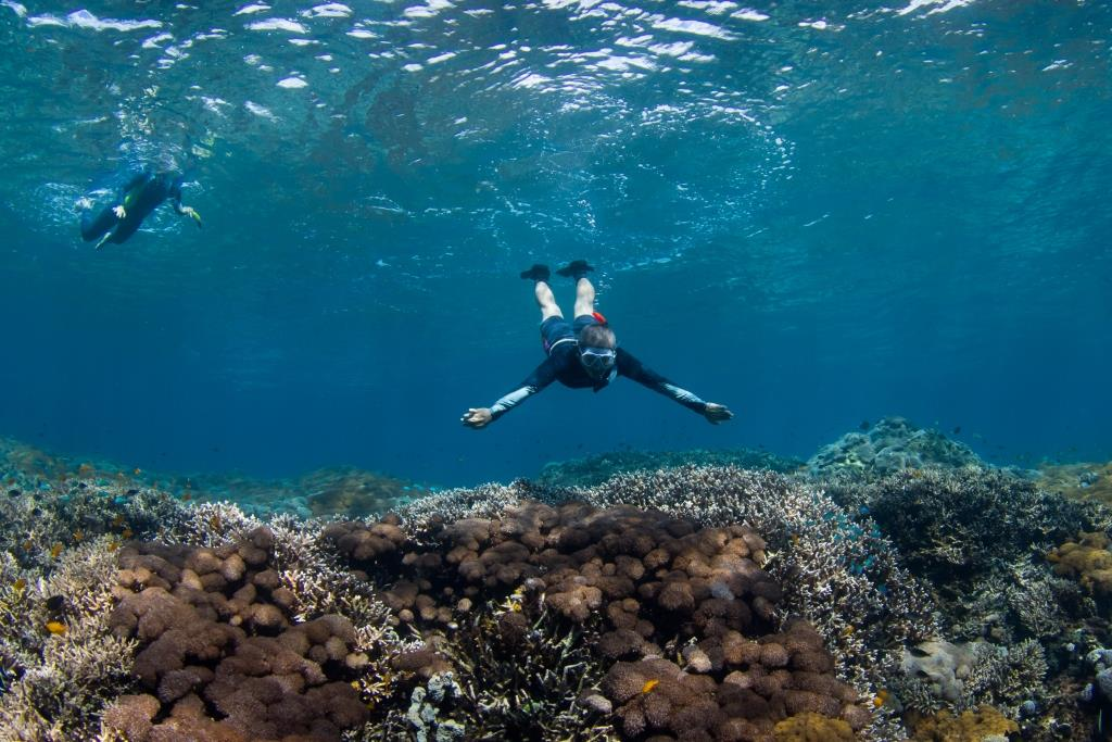 Bali snorkeling with mantas