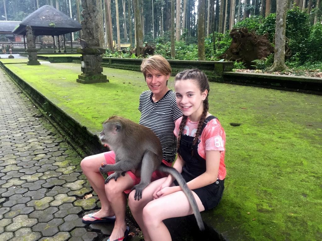 Monkeys north bali tour
