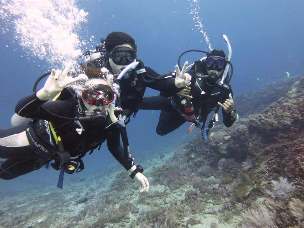 Team Teaching PADI OWC