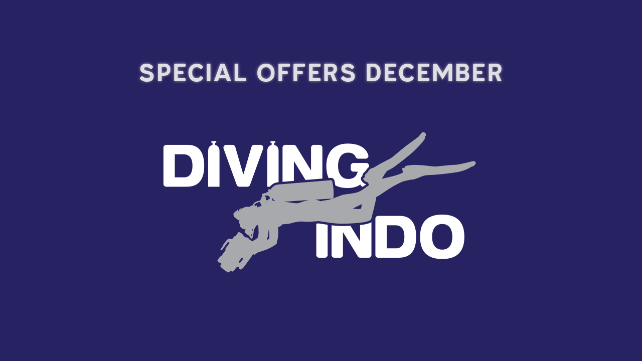 Special offer diving bali