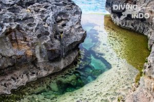 marine protected area Bali