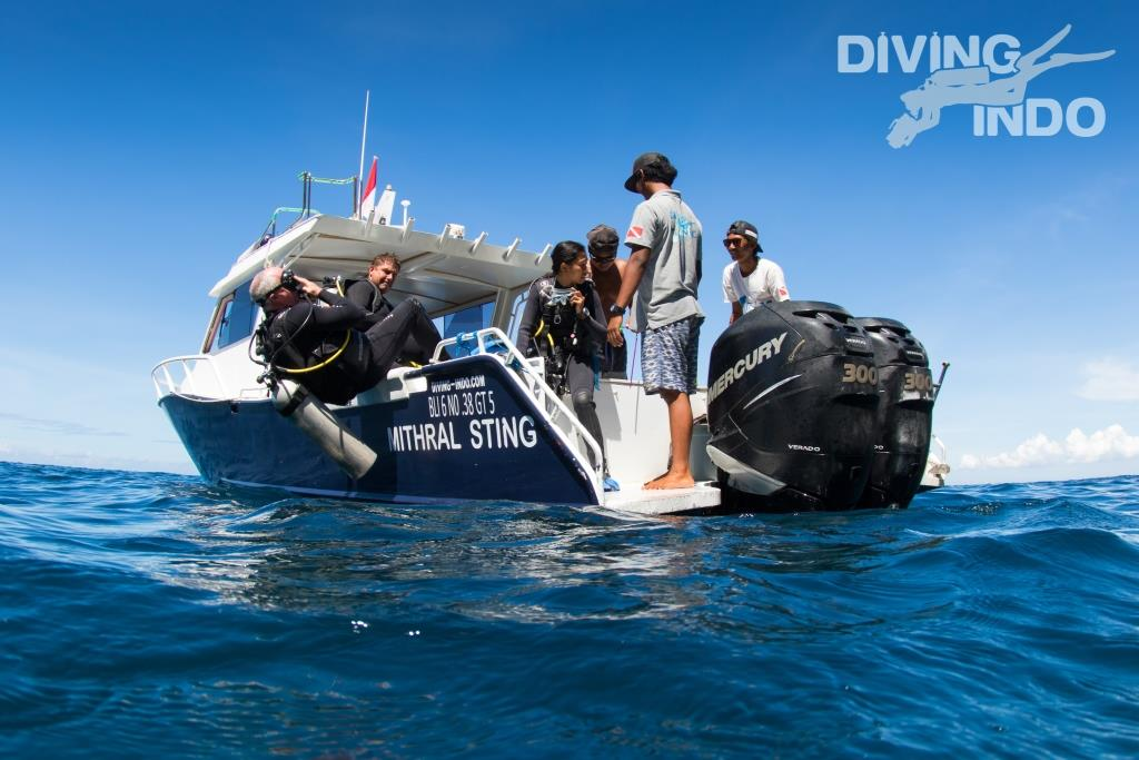 manta diving back roll nusa penisa