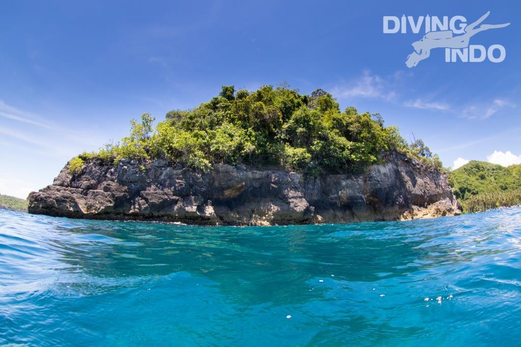 manta diving crystal bay Bali