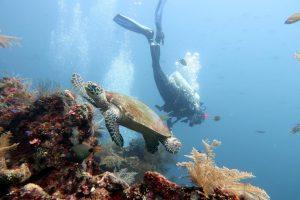 PADI Rescue diver course Tulamben Bali