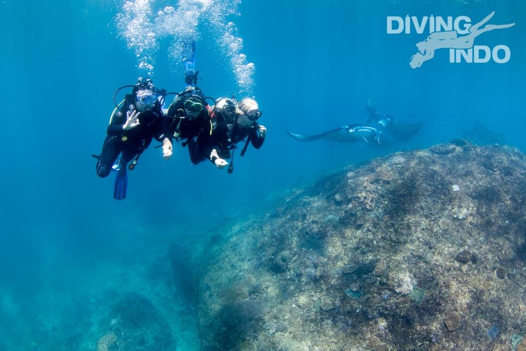 Bali discover scuba diving with mantas