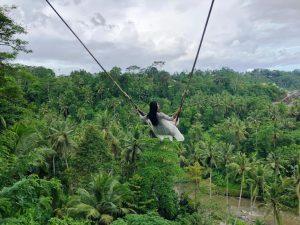 iving Indo Bali swings elya office