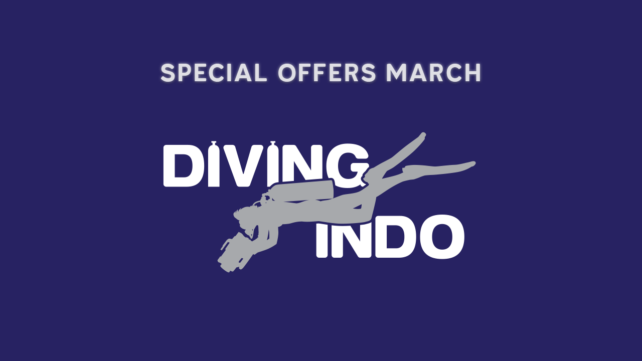 Special offers diving Bali