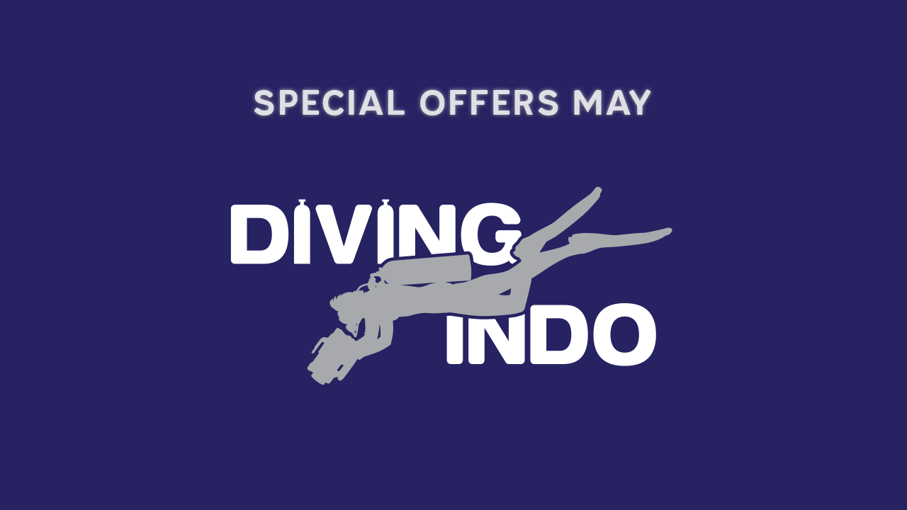 Diving Indo Bali diving special offers May