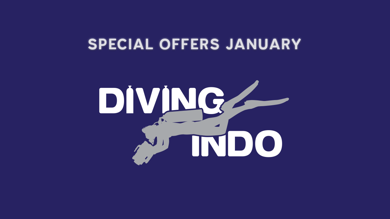 Special offers Diving Indo January